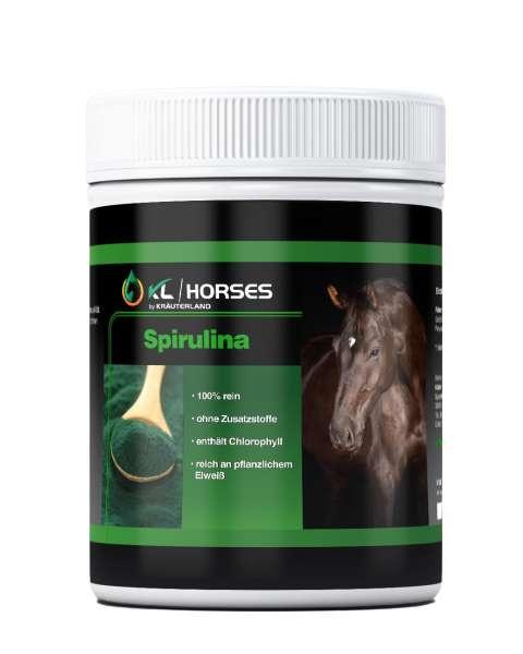 Spirulina Pulver für Pferde